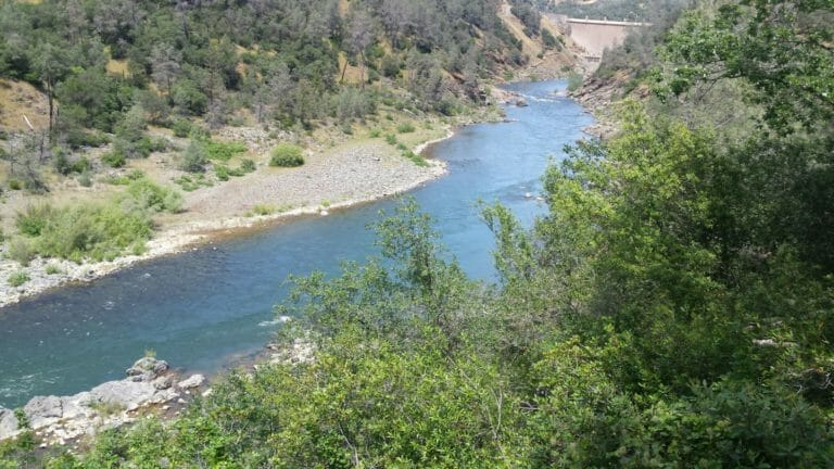 an analysis of the cosumnes river habitat restoration project His analysis indicates that basin and restore riparian habitat in the lower cosumnes river for restoration acreage the project encompasses the entire.
