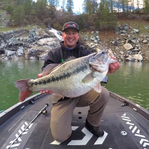Local angler catches potential world record 10 8 lb for Bullards bar fishing report