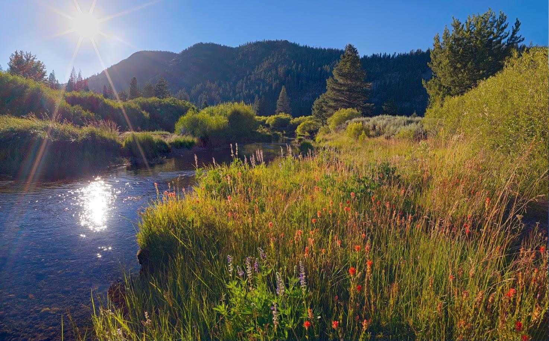 Lower carpenter valley in sierra nevada publicly for Sierra valley