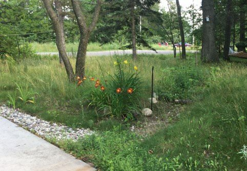 How Can I Prevent Erosion And Runoff In My Yard Yubanet