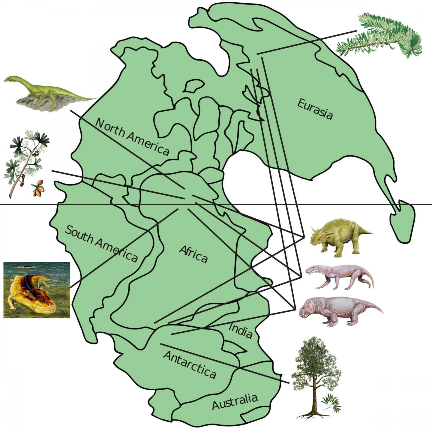 How much can 252-million-year-old ecosystems tell us about modern ...