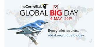 Cornell Lab of Ornithology – YubaNet