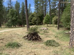 These piles will be burned once winter rains set in. Photo: YubaNet